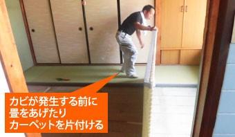 カビが発生する前に畳をあげたりカーペットを片付ける