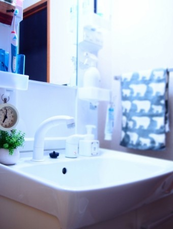 写真AC 暮らしに小さな緑を5(洗面台・縦 洗面台 電気歯ブラシ)