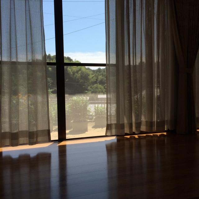 写真AC 縁側の日差し 網戸