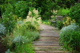 写真AC イングリッシュガーデン 庭木材