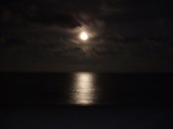 写真AC 月夜