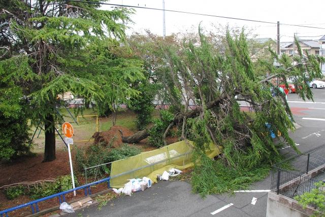 写真AC 災害 台風