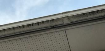 雨樋 洗浄前 有効板