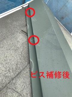 屋根 ビス補修後