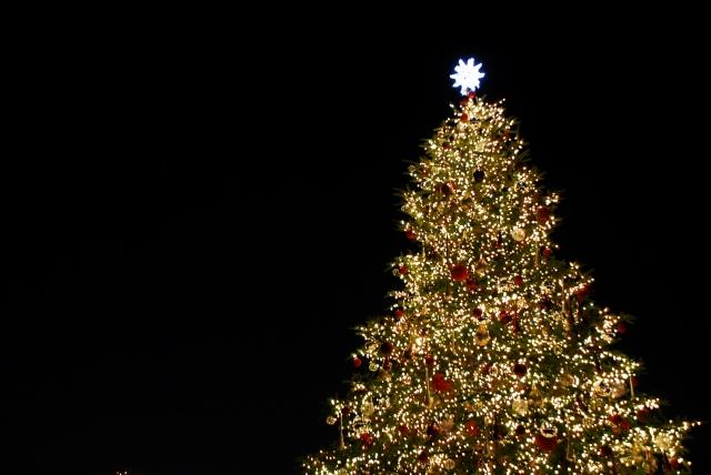 写真AC クリスマスツリー