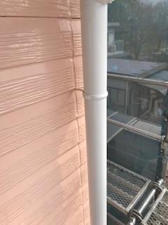 竪樋 塗装後