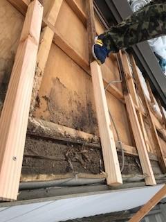 垂木 補修