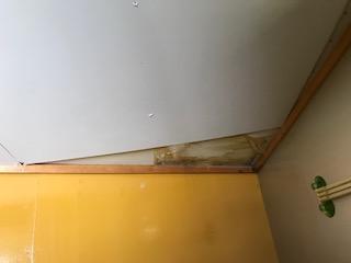 天井補修前