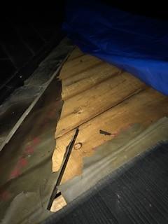 台風 屋根災害