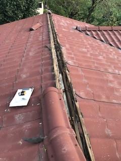 災害 屋根 瓦
