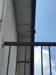 軒天井 劣化