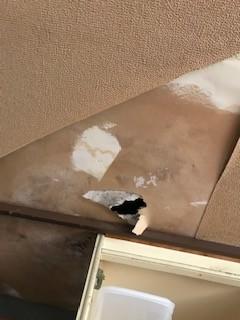 雨漏り 天井