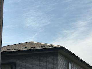 屋根 外観
