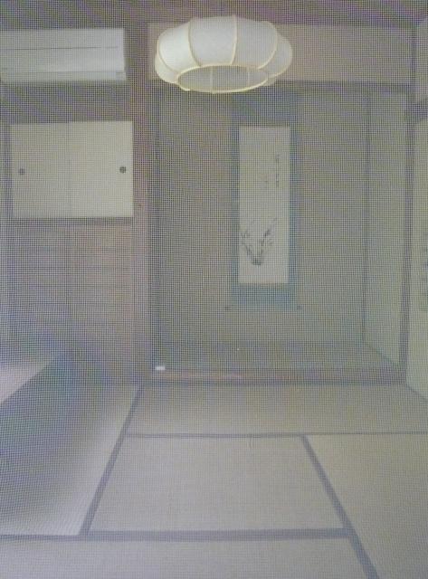 写真AC 網戸越しの和室 網戸