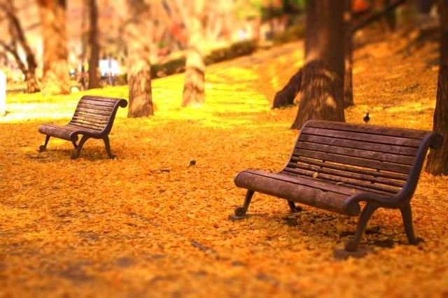 写真AC ジオラマ風のベンチと紅葉の絨毯