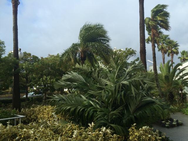 風雨(写真AC)